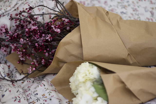 plum blossoms & hydrangeas