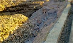 C360_2011-02-23 17-19-18 (MagicPAD - الكعبي) Tags: uae الإمارات الجزيرة الظاهر ناصر الكعبي الخطوة مصح محضة