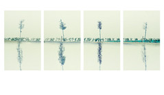 quadrophonic sketch () Tags: trees andy alberi landscape sketch andrea andrew panels disegno paesaggio benedetti panelli d7000