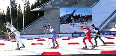 Langrennsløp i Norge - Ski-VM 2011