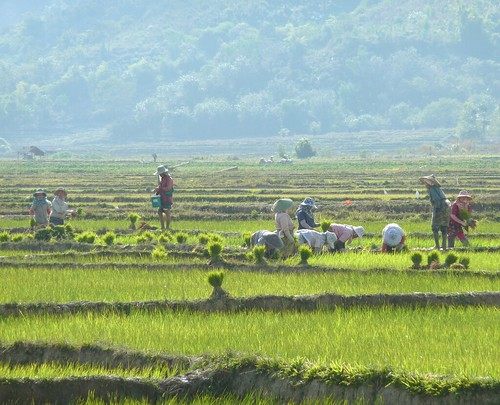 Kengtun-Village Palaung (7)