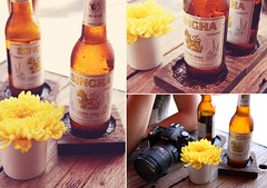 ice cold singha (lavendars) Tags: camera travel sunlight cold flower slr ice beer yellow digital canon table thailand wooden nikon diptych asia triptych market bangkok sunny pot thai vase chatuchak 500d singha 18200mm 5photosaday