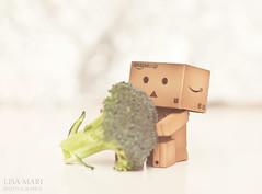 79/365 (Lisa-Mari) Tags: food green vegetables healthy bokeh eating broccoli vegetable snack danbo canonef50mmf14usm project365