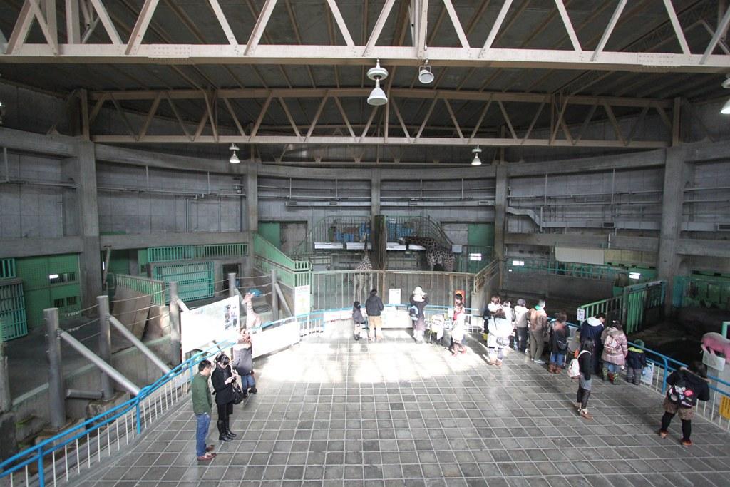 Sapporo Maruyama Zoo (11)