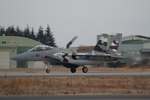 F-15DJ Aggressor