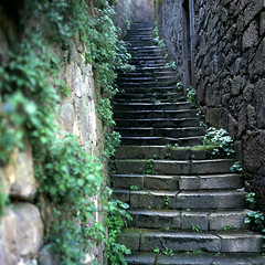 Old stairs after the rain (RalM.) Tags: zeiss cm hasselblad explore velvia carl pro epson 500 fujichrome e6 ral planar s dantas 8028 v750 tetenal autaut ralm diyprocess clortec