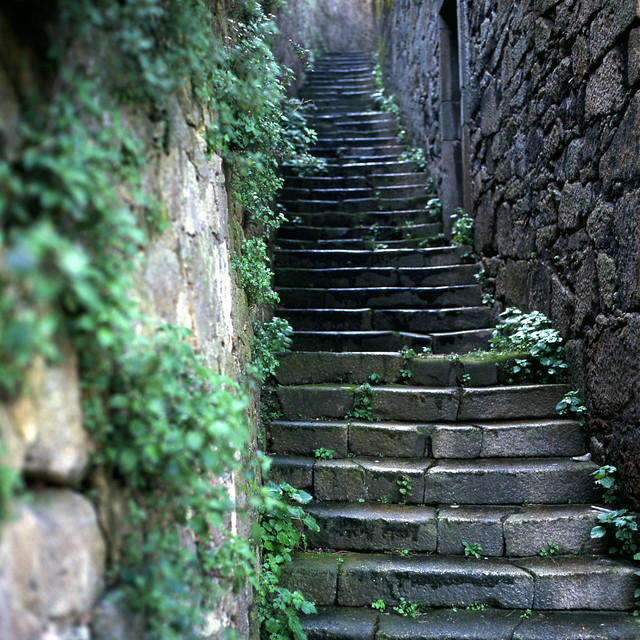 Old stairs after the rain