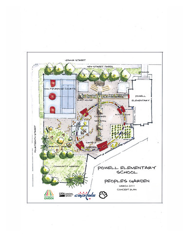 School Garden Design Concept created by Forest Service landscape architect Matt Arnn and revealed by the entire People's Garden team for W. B. Powell Elementary School, consisting of the Washington Capitols, U.S. Department of Agriculture and D.C. Public Schools in Washington, D.C. revealed to 289 parents and students, the School Garden Design Concept on  Thursday, March 10, 2011.  The design draft was created  Mr. Arnn, with the support of Natural Resources Conservation Service landscape architect Bob Sneickus, Outreach and Education Coordinator Annie Ceccarini and Project Manager Leslie Burks who worked with the Principal Janeece Docal and the school during an earlier visit to develop illustrated ideas from parents and students.  Representing the Washington Capitols is Defenseman, Number: 52 Mike Powell, Comcast SportsNet Analyst Alan May and Director of Community Relations Elizabeth Wodatch.