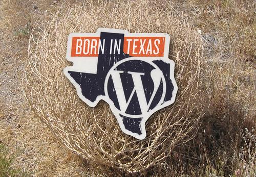 WordPress Born In Texas