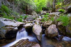 ___green wild___ (Jose Paiva) Tags: longexposure blue light color green portugal nature water yellow canon eos landscapes waterfall 7d hitech 10mm pnse flickraward jospaiva jp8296
