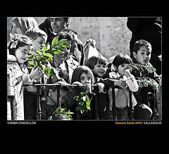 Verde inocencia (Chema Concellon) Tags: people españa verde cutout spain europa europe gente retrato catedral niños valladolid infantil grupo ritual público infancia 2009 infantiles semanasanta seo palmas tradición castilla celebración olivo inocencia ramas miradas domingoderamos procesión rito hollyweek castillayleón religión devoción chemaconcellón desaturadoselectivo procesióndelaspalmas procesióndelaborriquilla espectadoes