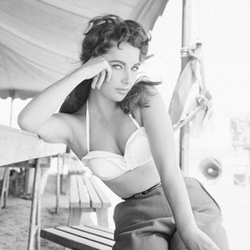 elizabeth taylor by luce goods