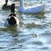 Splash and Drip