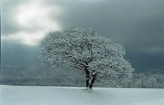 Last storm of winter