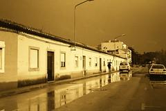 After Rain III: Yellow (rgrant_97) Tags: trip bw film portugal olympus pb bn 35 ilford olympustrip35