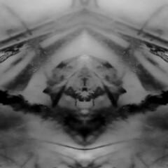 - Pomegranate in the Mirror - Granatapfel im Spiegel - Aktion mit Glas Wrfel Wasser (hedbavny) Tags: vienna wien autumn blackandwhite plant reflection art water glass square dead aquarium austria mirror living sketch leaf wasser underwater nosferatu spiegel kunst diary herbst digitalart pflanze manipulation sketchbook september cube mementomori undead aquatic melancholy rotten transition root decomposition schwarzweiss blatt spiegelung tagebuch glas wrfel wurzel vanitas quadrat vampir unterwasser verfall verwelkt bearbeitung murnau skizze melancholie radix wasserpflanze hydrophyte schwarzweis skizzenbuch bergang aktionismus computermanipulation untot scheintod cmwdblackandwhite nosferatueinesymphoniedesgrauens friedrichwilhelmmurnau transitio artzoyd lebendetote hedbavny ingridhedbavny aktiion