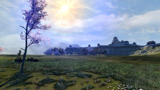 20643Sunny Castle Meadow
