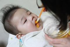 離乳食ニンジン初挑戦
