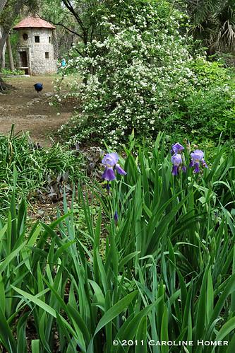 Gardens near pigeon cote
