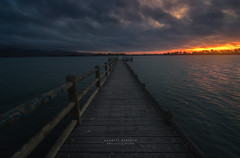 Wharf (DanielBartolo) Tags: pocketsofawesome christchurchnz newzealand beach seascape nature landscape light sunrise sun spring moody waves sea river water fog flower bokeh