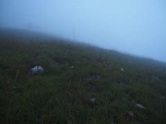P9230080 (David.CY.Yang) Tags:  syuemountain   eastpeak snowmountain   taiwanmountainash taiwanlaughingthrush  usnea  dawn  holyridgeline   glacialcirque