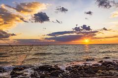 (diegomaradonatuapse) Tags:  caucasus   beach russia sigma1750f28 nikond7200 blacksea   tuapse