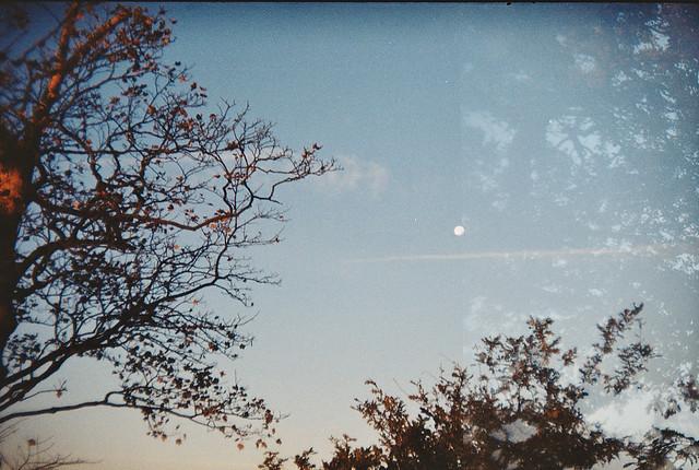 Photo28_24A