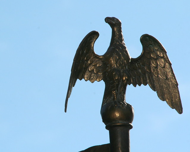 bird detail at State House by VC3 Employee Photos