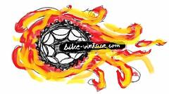 Bikevintage.com www bike vintage com