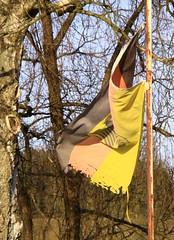 (:Linda:) Tags: germany rust funny village flag thuringia rost decaying rostig germanflag flagholder brden rostend