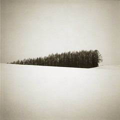 Wedge Copse (Eye) Tags: longexposure hokkaido fujifilm biei 30seconds acros100 nd400 nd8 bronicaec nikkorpc75mmf28