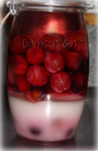Damson Gin 1