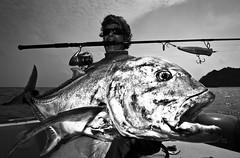 Andaman Islands, India. Fisherman with a large Giant Trevally (Caranx ignobilis)