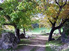 gontar 4 (alamez) Tags: espaa mountain verde green way countryside dc spain rboles camino random vegetation campo tres montaa vegetacin albacete wak gontar benq e720