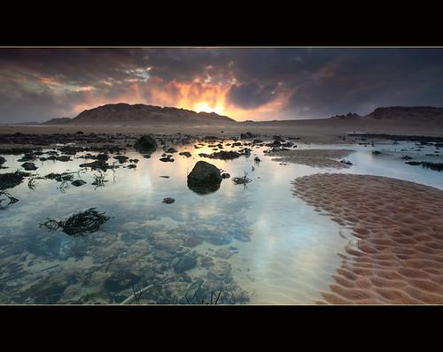 Dunes by angus clyne