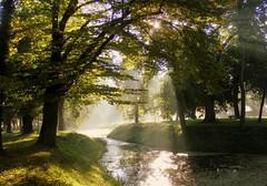 morning light (halina-anna) Tags: morning light poland