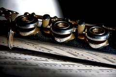 Plats Oberts (TzazuZuri) Tags: music reflection nikon details flutetraversiere