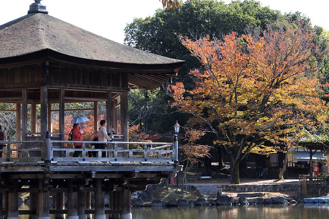 20101116_114155_奈良公園_浮見堂