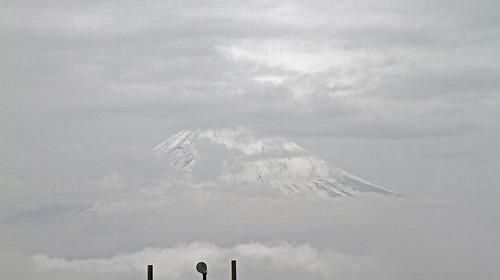 Fuji o casi