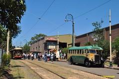 "50 years since Sydney trams (highplains68) Tags: heritage anniversary sydney tram australia historic nsw newsouthwales aus sutherland tramway loftus sper museum"" ""50th ""sydney leylandbus trams"" mo1275"