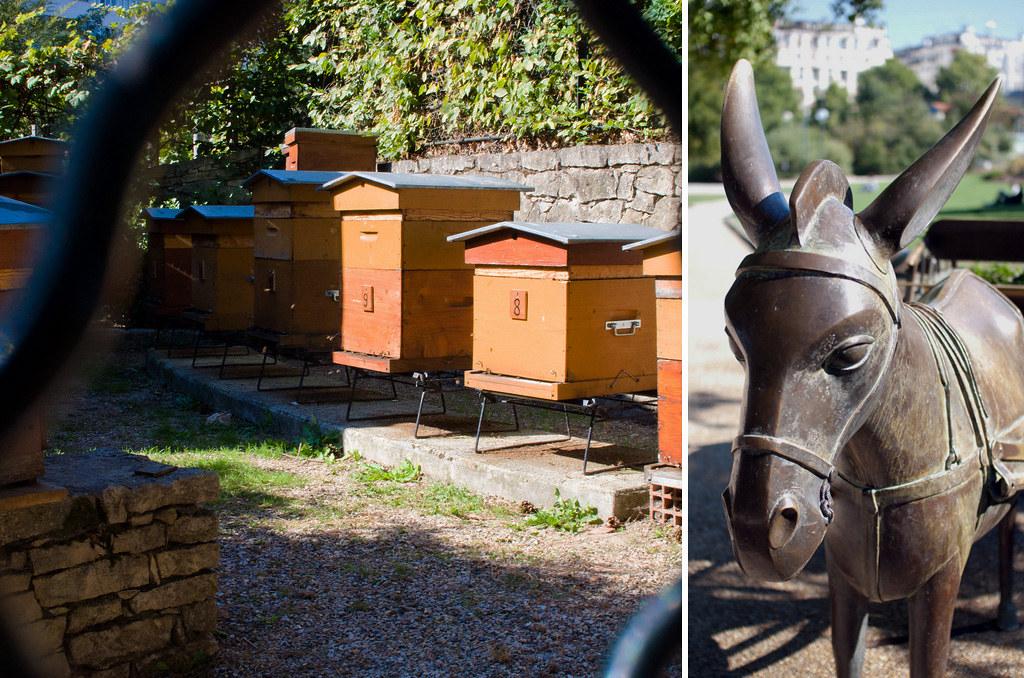 Les ruches du parc Georges Brassens