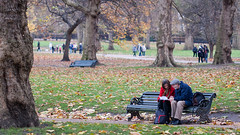 Stopping for Directions, Green Park, London, 2010 (larkvi) Tags: uk autumn trees england green london grass leaves sitting unitedkingdom greenpark parkbench winslow larkvi seanwinslow larkvicom wwwlarkvicom