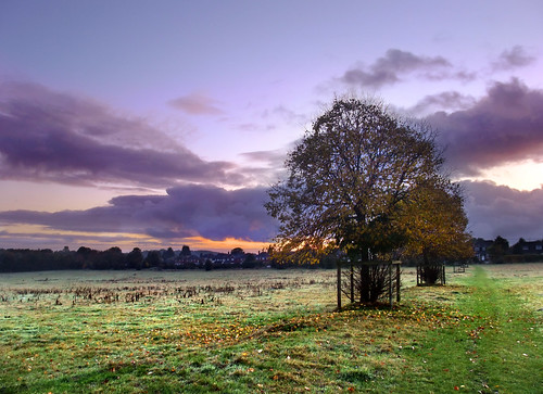Dawn over Basingstoke Common
