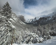 Yosemite Valley with Fresh Snow. February 26, 2011 (Robert Pearce Photography) Tags: california trees winter snow wideangle valley yosemite halfdome february elcapitan bridalveilfalls yosemitevalley 2011 nikond200 robertpearce robertpearcephotography