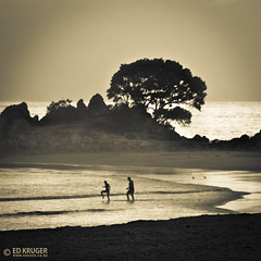Summer Morning (Ed Kruger) Tags: morning sea newzealand summer sky blackandwhite bw sun holiday cold tree green water silhouette skyline swimming sunrise relax landscape sand couple horizon wave clear aotearoa tauranga bayofplenty maunganui edkruger