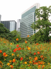 Hama-Rikyu Sunken Garden