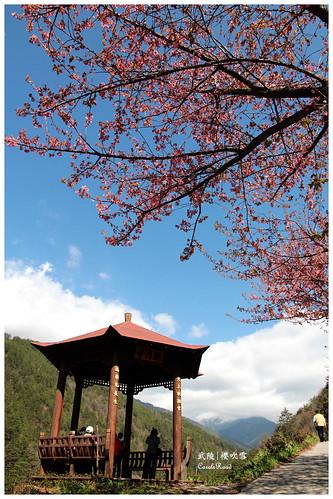2011-03-04 陽明武陵 259 r