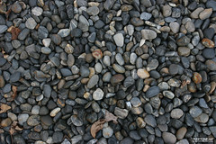 TAKETONE_GROUND_0087 (Game Texture Images) Tags: stone earth ground pebble gravel pebbletexture stonetexture groundtexture graveltexture pebbleground gravelground