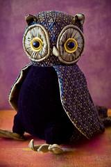 Hetty ~ for Owl Friday (Zo Power) Tags: texture bigeyes warmth devon owl doorstop hetty 1755mmf28 owlfriday