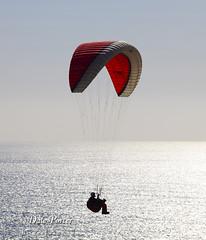IMG_305_Paraglider_201103